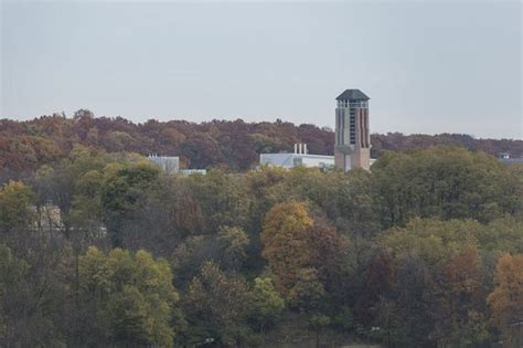 Ann Arbor one of most environmentally friendly cities in U
