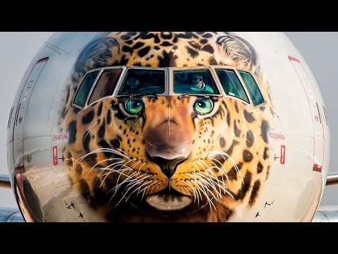 Boeing Commercial Airplanes B777-300ER - The Art of Flying