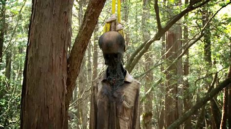 Aokigahara – The Second Largest Suicide Site – World for