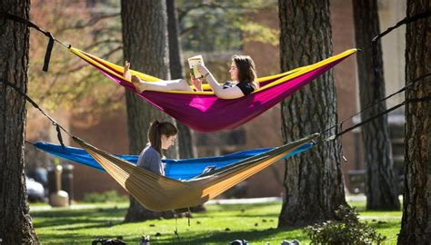 Embrace Global Warming by Hanging a Hammock in these 7